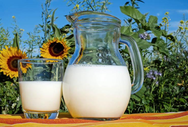 Ventajas y consumo de lácteos